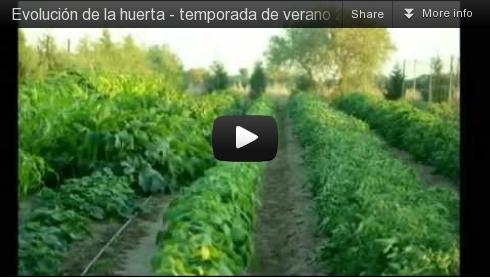 vídeo de la huerta